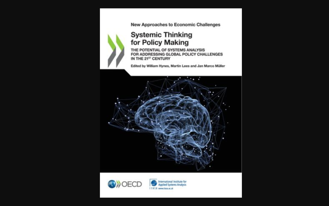 Systemic Thinking for Policy Making